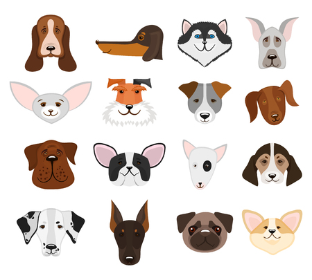 pedigree: Set of muzzle dogs and heads pedigree doggy isolated on white background. Vector illustration