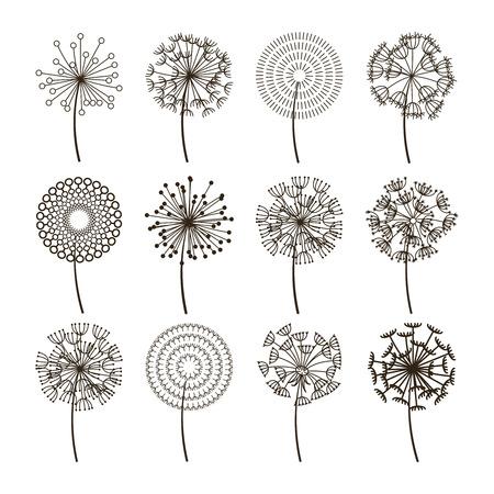 Dandelion flower icons. Dandelions fluffy seeds vector silhouettes. Natural plant blossom black illustration