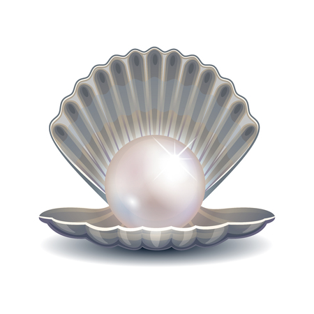 open sea: Pearl in shell vector illustration. Open sea shell with pearl for fashion  or poster. Gleam pearl bright and glitter