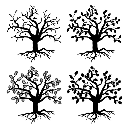Park old trees. Vector tree silhouettes with roots and leaves. Monochrome tree flora of collection illustration