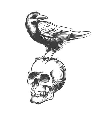 corvo imperiale: Male mano corvo disegnata illustrazione vettoriale. Black Devil corvo sulla cranio isolato su sfondo bianco. Raven Tatuaggio e cranio umano