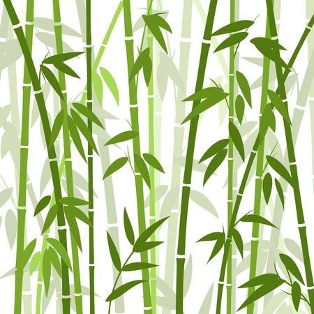 Chinese or japanese bamboo grass oriental wallpaper vector illustration. Tropical asian plant background Ilustração