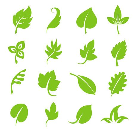 228,130 Foliage Stock Vector Illustration And Royalty Free Foliage ...