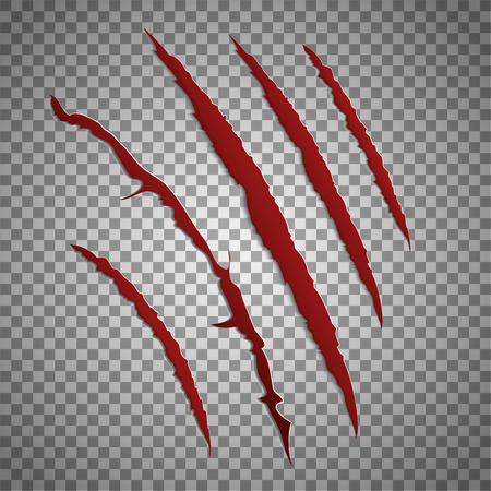 claw: Slash scratch set on transparent background. Vector scratching beast red claw marks. Shred torn of paw illustration Illustration