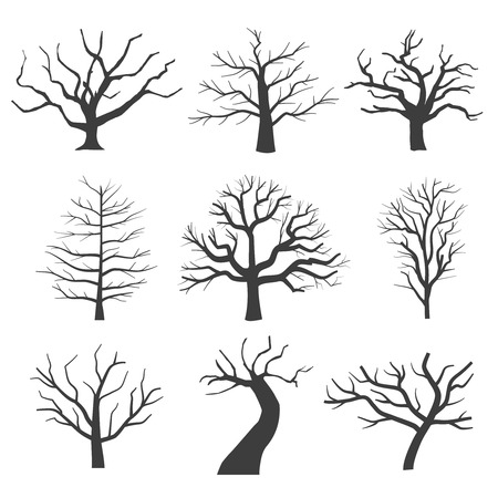 tree silhouettes: Dead tree silhouettes. Dying black scary trees forest vector illustration. Natural dying old tree of set Illustration