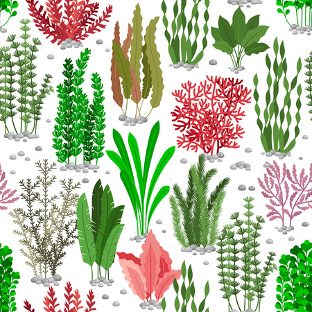Wodorosty bezszwowe wzór. Morze weed futra wektor tle dla mody morskiej. Kolorowe wodorosty podwodne, natura przyrody flory ilustracji