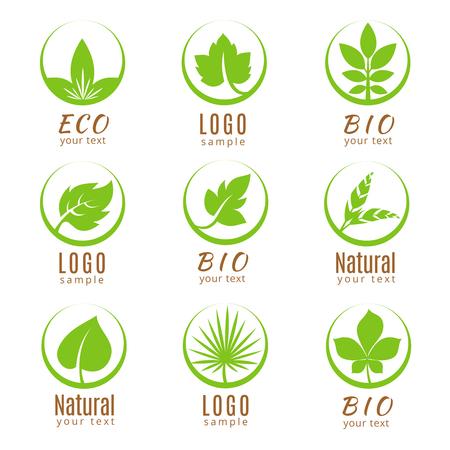 自然ロゴ セットまたはエコロジー ラベル、緑の葉が白い背景で隔離。ロゴの新鮮な植物、バッジや緑の葉付きのラベル。ベクトル図