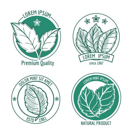 mint leaf: Vector mint leaf icons or menthol spearmint labels. Healthy fresh herb, peppermint organic badge illustration