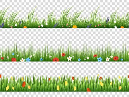 hierba verde y flores del vector primavera patrones de bordes de la naturaleza en la ilustración del vector del fondo transparente. frontera de hierbas y césped de la flor