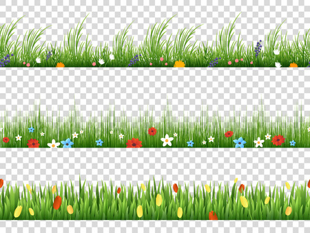 Wektor zielona trawa i kwiaty wiosny charakter wzory graniczne na przezroczystym tle ilustracji wektorowych. Ziołowy trawnika i kwiatów granicy