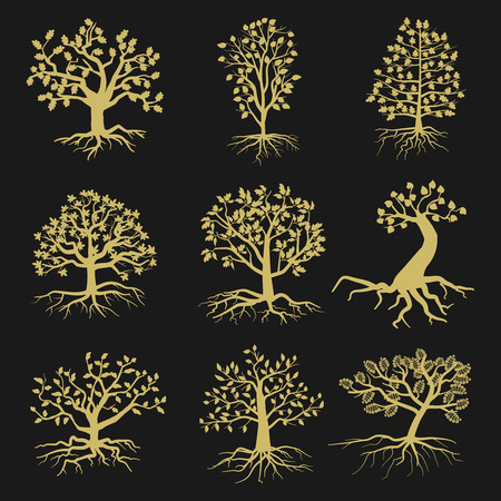 tree symbol: Vector tree silhouettes with leaves and roots isolated on black background. Illustration of nature shape trees