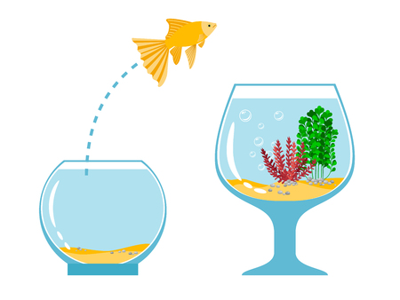 Gold fish jumping escape from fishbowl to other aquarium simple vector illustration. Fish pet jump to tank bowl with water Illustration