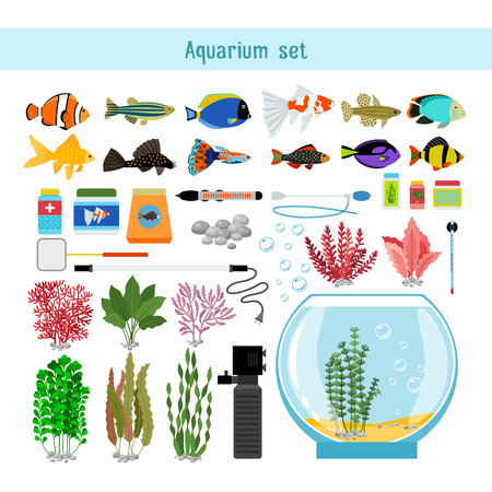32,666 Aquarium Stock Vector Illustration And Royalty Free ...