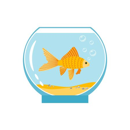 Gold fish in small bowl isolated on white background. Orange goldfish in water aquarium vector illustration Illustration
