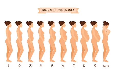 Mooie zwangere vrouw en bevalling vlakke silhouetten voor de zwangerschap infographics van de het ziekenhuisgeneeskunde