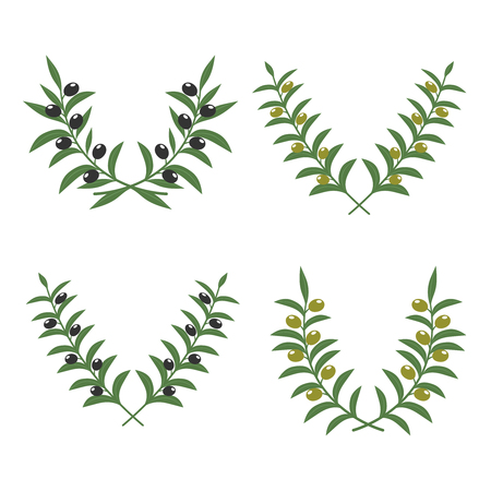 branch isolated: Olive branch wreaths vector isolated on white background
