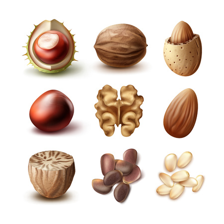 nutshell: Set of different nuts