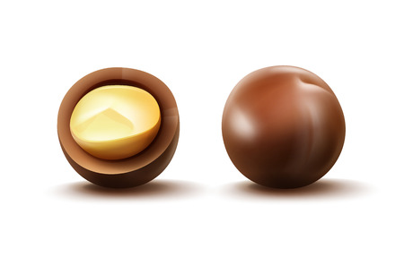 unpeeled: Macadamia nuts with shell