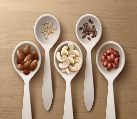 intact: Different nuts in spoons Illustration