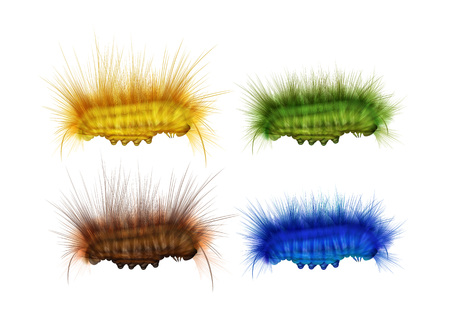 Set of caterpillars Illustration