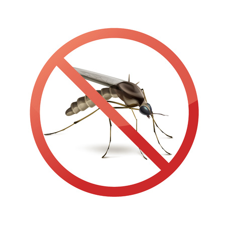 Stop sign on mosquito