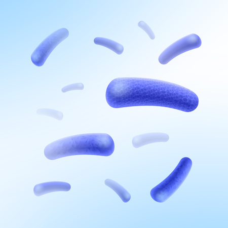 Rod-shaped bacilli bacteria Illustration