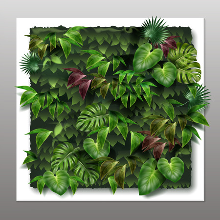 Vector square vertical garden or green wall with tropical green leaves, close-up on gray background Illustration