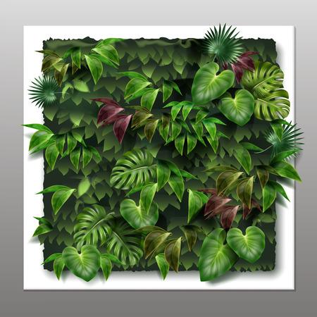 Vector vierkante verticale tuin of groene muur met tropische groene bladeren, close-up op grijze achtergrond Stock Illustratie