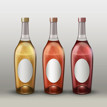 Vector set of full colored bottles with empty labels front view isolated on gradient background Illustration