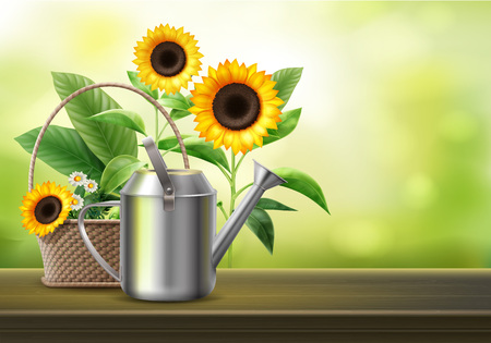 Vector illustration of watering can and wicker basket with sunflowers and camomile