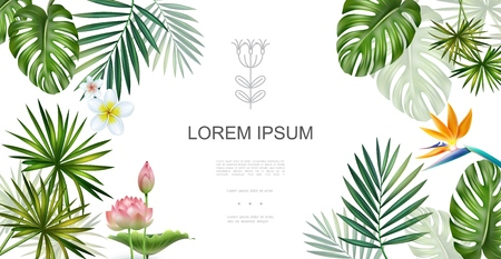 Realistic tropical plants floral concept with frangipani lotus bird of paradise flowers monstera and palm leaves vector illustration