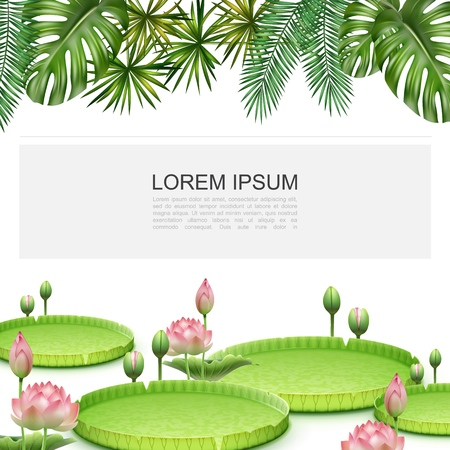 Realistic tropical plants colorful template with blooming lotus flowers monstera and palm leaves vector illustration Illustration