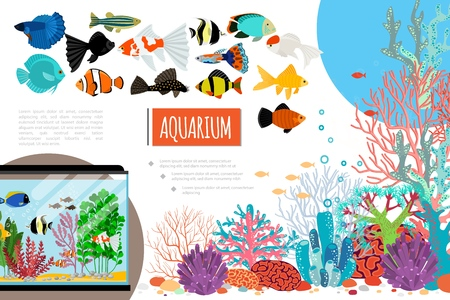 Flat aquarium elements composition with exotic colorful fishes corals seaweed stones and water bubbles vector illustration Illustration