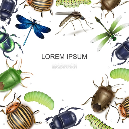 Realistic insects colorful template with dragonflies colorado potato and scarab colorful dung bugs gnat caterpillars on white background vector illustration
