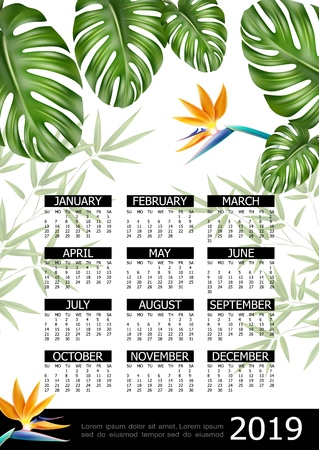 Realistic tropical 2019 year calendar poster with bird of paradise flower monstera and strelitzia leaves vector illustration