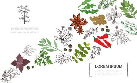 Botanische Vorlage der gesunden Gewürze mit natürlicher Kräuter- und Pflanzenvektorillustration des bunten und monochromen Stils
