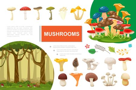 Flat mushrooms colorful composition with forest leaves branches edible and poisonous mushrooms vector illustration  イラスト・ベクター素材