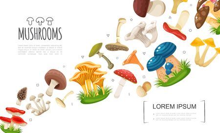 Flat forest mushrooms concept with edible and poisonous colorful mushrooms on white background vector illustration