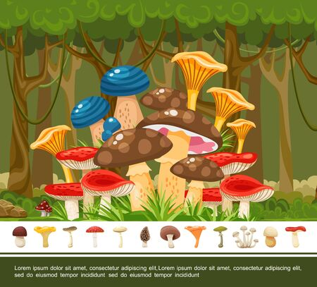 Summer forest colorful template with edible and poisonous mushrooms in flat style vector illustration