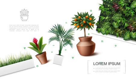 Realistic beautiful plants template with red ginger flower palm leaves kumquat tree grass in flowerpots and green wall with tropical leaves vector illustration