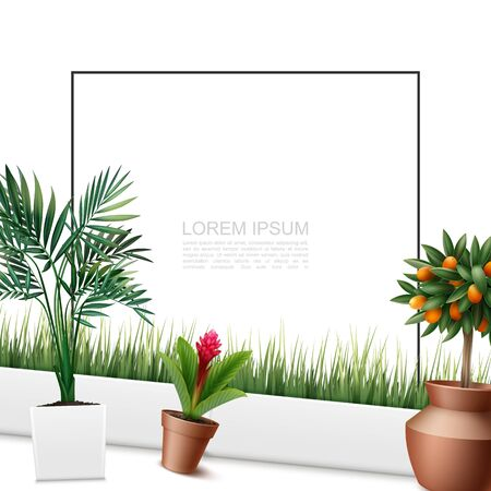 Beautiful home plants colorful template with frame for text palm leaves red ginger flower kumquat tree grass in pots in realistic style vector illustration