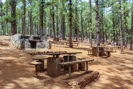 Wooden tables and stone grills for picnic and barbecue Canarian Pine forest, Esperanza, Tenerife. 免版税图像
