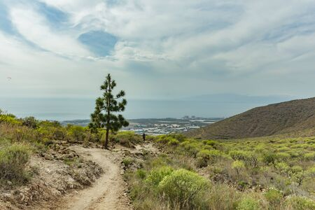 Stony path at upland surrounded by endemi plants. Sunny day. Clear blue sky and some clouds along the horizon line. Rocky tracking road in dry mountain area with needle leaf woods. Tenerife. Banco de Imagens
