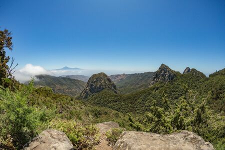Los roques and famous Agando rock - cult place near Garajonay national park at La Gomera. Old volcanic mountain peaks. Thickets of relic laurels and heather on steep green slopes. Canary, Spain. Banco de Imagens
