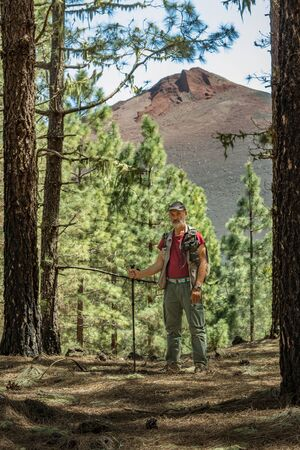 Traveler in a cap with backpack, hiking sticks has stopped to make a shot. Pine tree forest near the Volcano Arenas Negras. Blue sky and the top of volcano in the background. Tenerife, Canary Islands