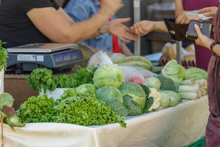 Festive agricultural market. One of the counters with fresh vegetables is zucchini, cabbage, salad, cilantro and much more. The owner of the counter serves customers.