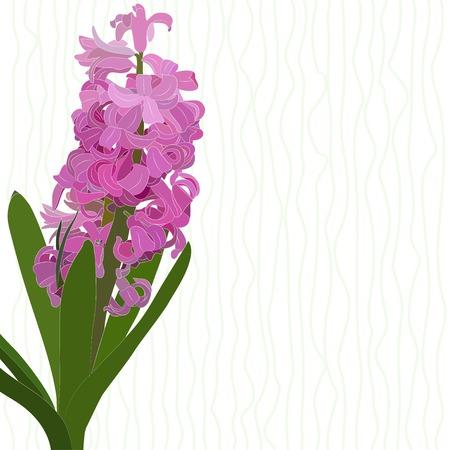 봄 꽃의 테마에 그림입니다. 핑크 히 아 신 스 스트라이프 배경에.
