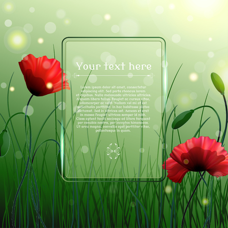 Vector background. Meadow with poppies and grass. Bokeh and sparks. Transparent frame for your text.