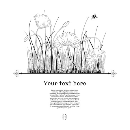 Vector card. Hand drawing poppy flowers, buds and grass. Place for your text. Perfect for announcements, invitations and greetings.
