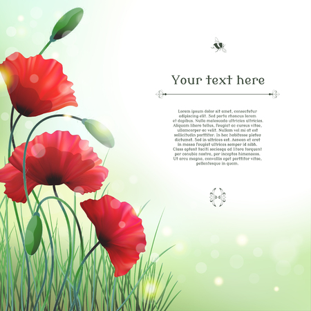 Vector card. Poppies and grass. Bokeh and sparks. Place for your text. Perfect for announcements, invitations and greetings.